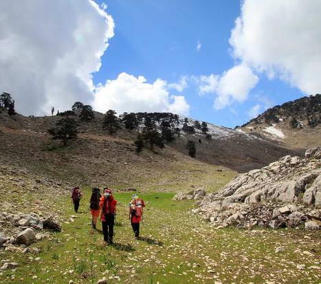 Панорама в Краснодарском крае, панорамные места горы Физиабго