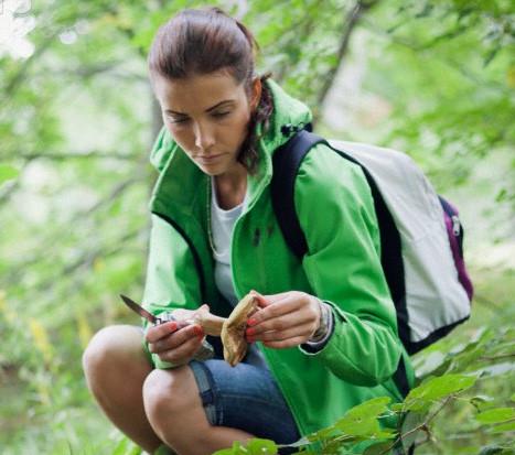 Cобирать грибы в горах Краснодарского края