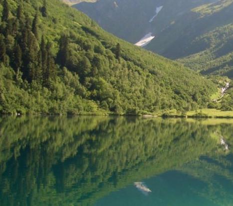 Озеро Краснодарского края в лесу